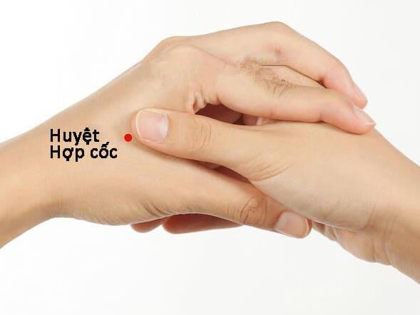 Huyệt Hợp Cốc : giúp giảm đau