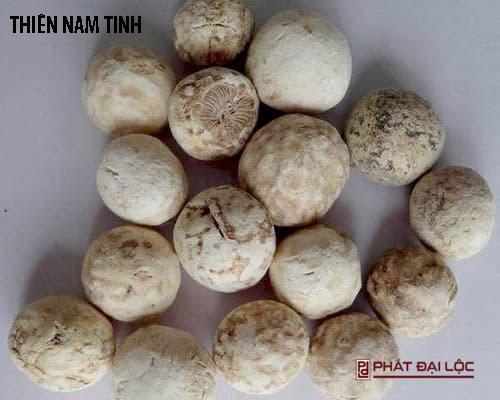 Thiên Nam Tinh